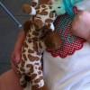 wubanub_giraffe
