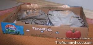storage_ideas_tomato_box